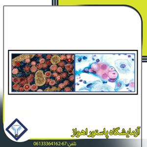 امراض البکتریایه